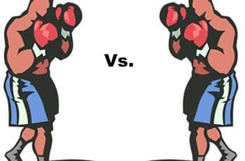Image of two boxers