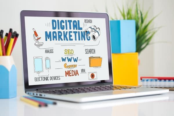 Digital Marketing & Search Visibility