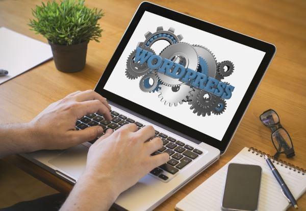 WordPress Designs & Installations