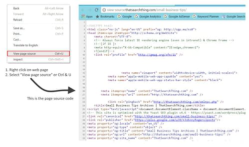 Use View Source to see web page source code