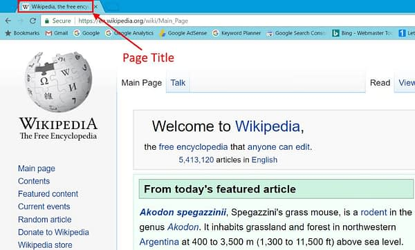 Page Title on Web Page