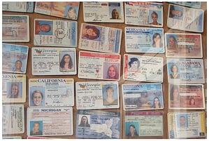 Image of Fake ID Wall of Shame