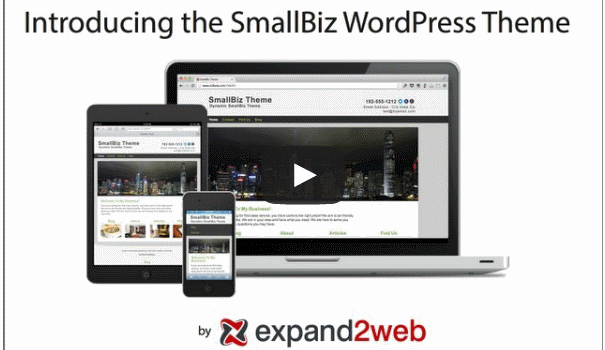 Small Biz WordPress Theme Video