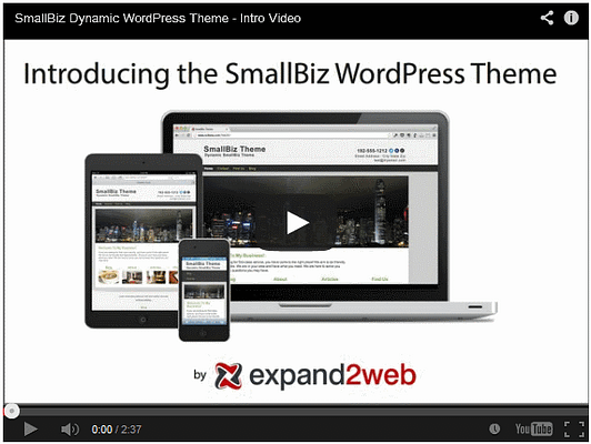 Small Biz WordPress Theme Video