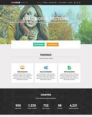 MyThemeShop One-Page WordPress Theme